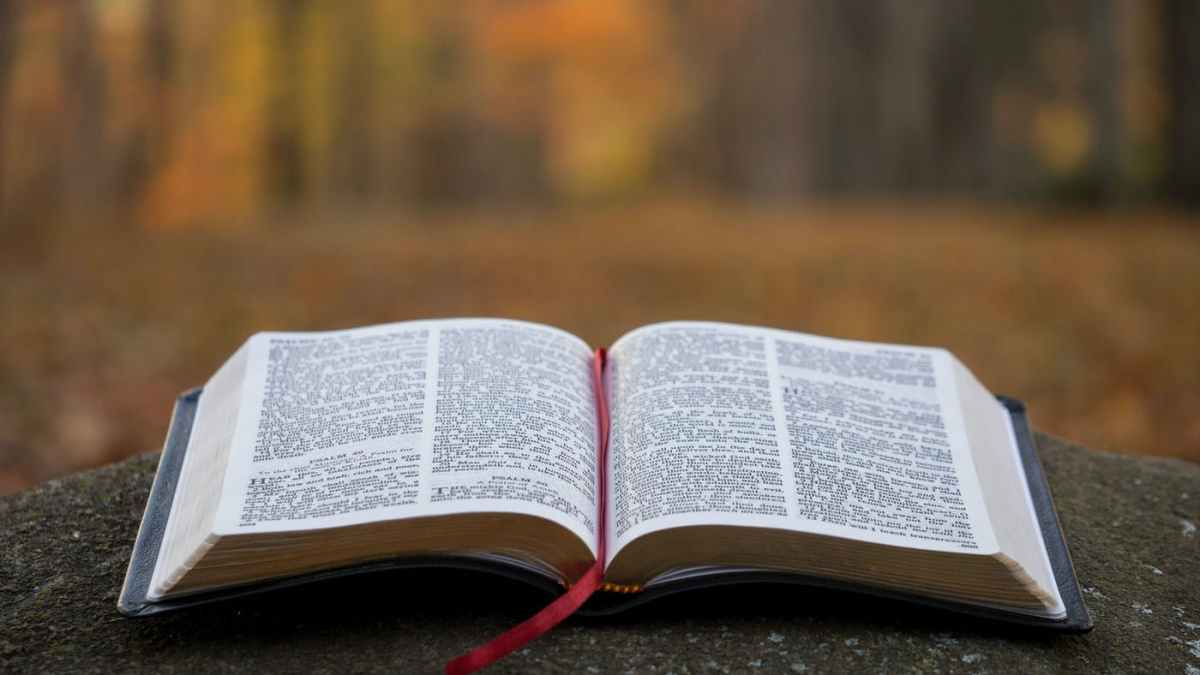 Abortion and Christianity: a Definitive, BiblicalDiscussion